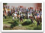 diorama waterloo 26.JPG