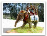 Elefante Indiano HAT2.JPG