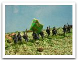 US Irish Brigade.JPG